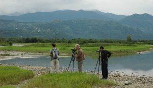 Reizen voor vogel- en natuurliefhebbers